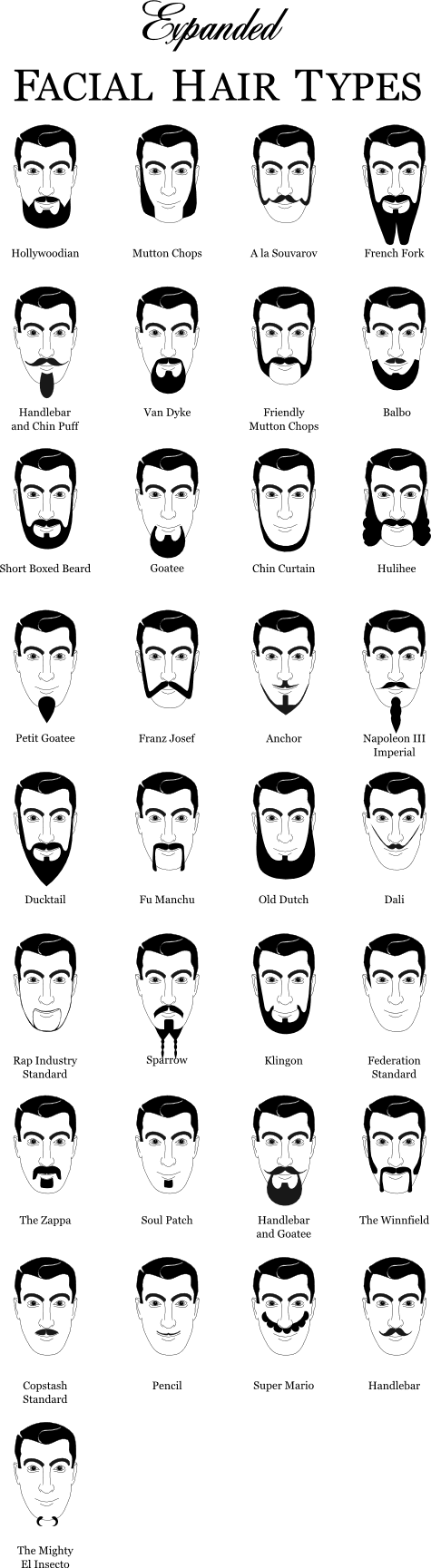beardtypes.png